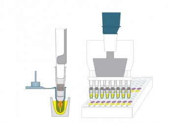 Deliver reagents to capsules-4